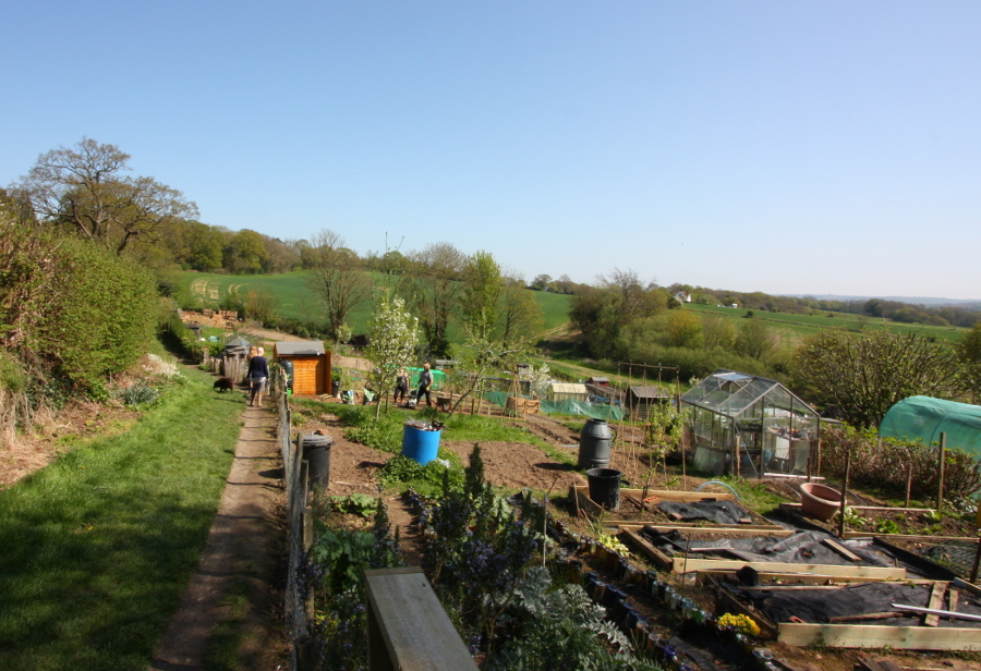 Allotments, Battle
