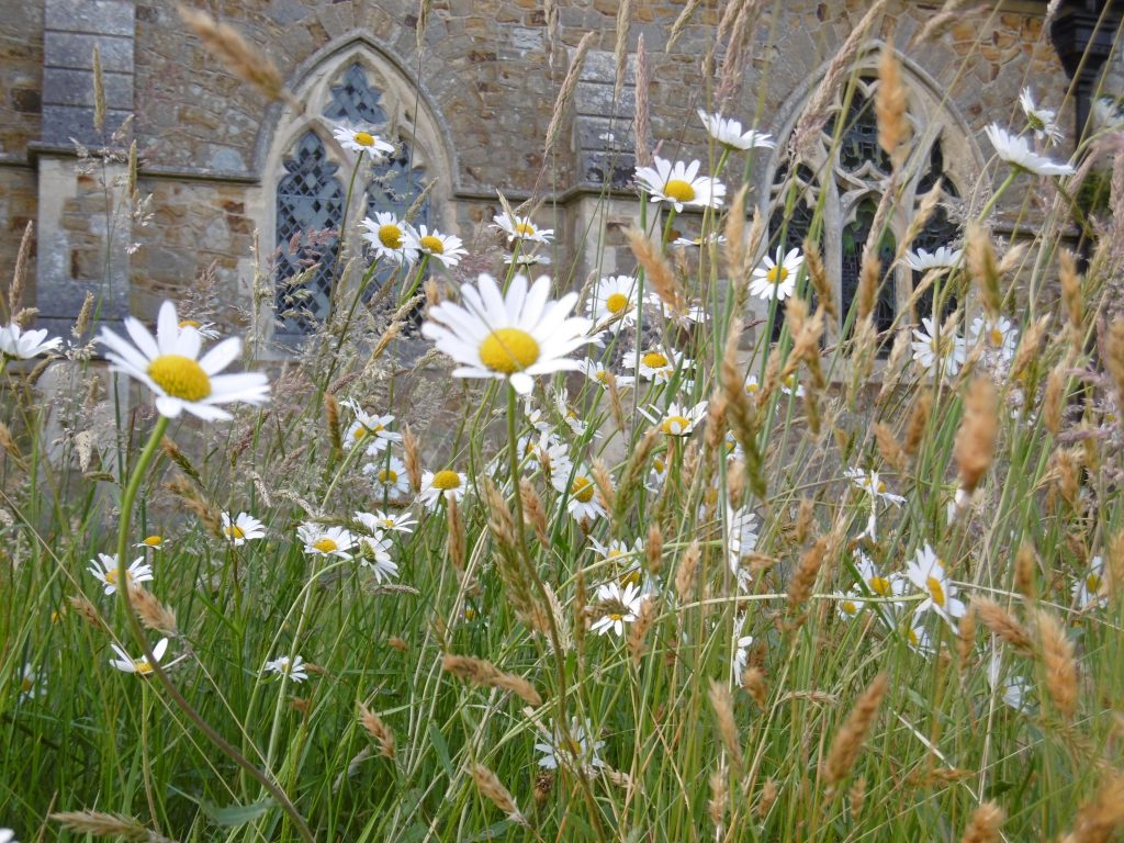 Netherfield Churchyard